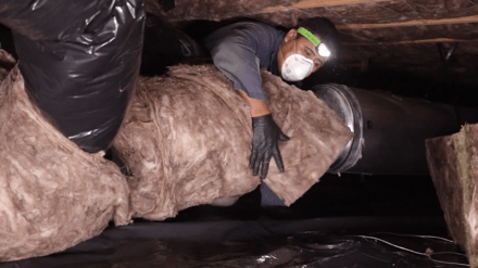 Clean Crawls Renton Wa 98057 Crawl Space Insulation